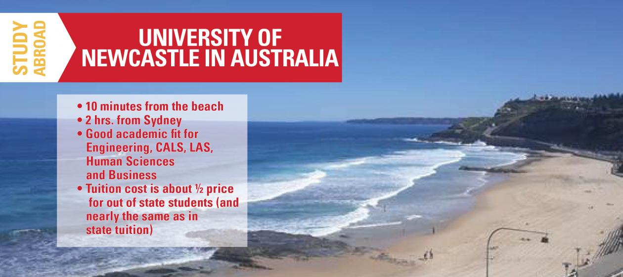 Study Abroad in Newcastle